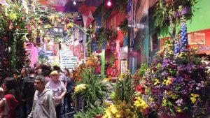 150 m2 volgepropt met bloemenpracht en Hollandse decoratie